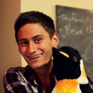 Logan_penguin